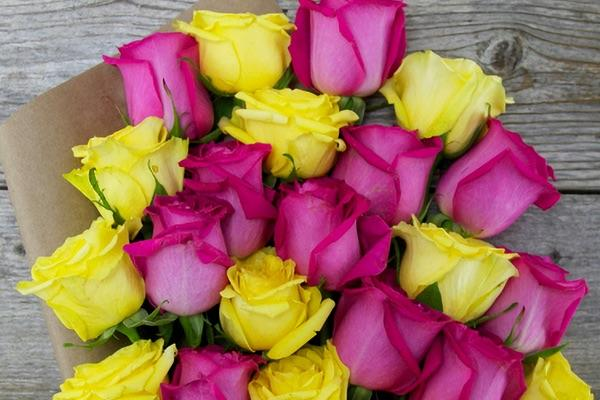 Hot Lava Roses